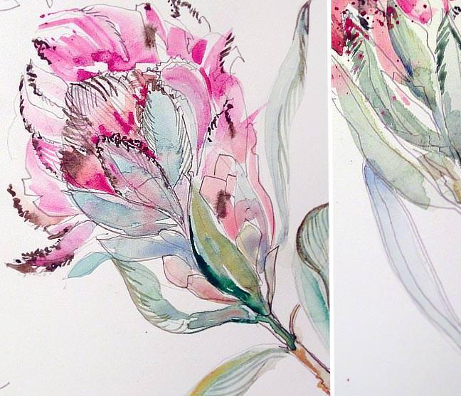 Watercolor Protea Artwork