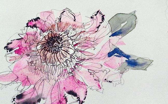 Watercolor Protea Pink