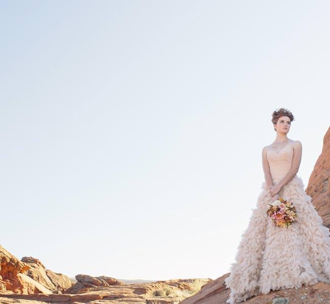 watters_blush_wedding_gon