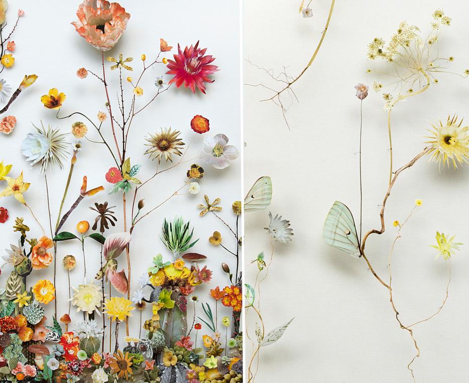 flower-composition-art